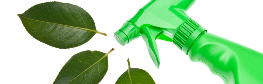 Healthy Allergen-Free Cleaning Services & Products